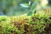山西省农业农产品食品饮料保健品企业公司名录联系方式