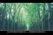 中国传媒大学2016年艺术类本科专业招生简章