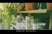 河南省2017年音乐专业省统考考试要求