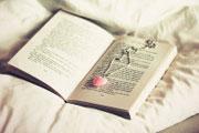 <b>艺考生必读文学编导管理类专业解读</b>