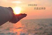 重庆时尚电视台招聘编导摄影行政人员