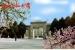 西北师范大学2015年艺术设计合格线