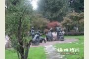 云南师范大学2015年艺术类成绩查询