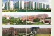 宁波大学2016年艺术类专业成绩公布