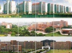 <b>宁波大学2012年艺术类专业成绩公布</b>
