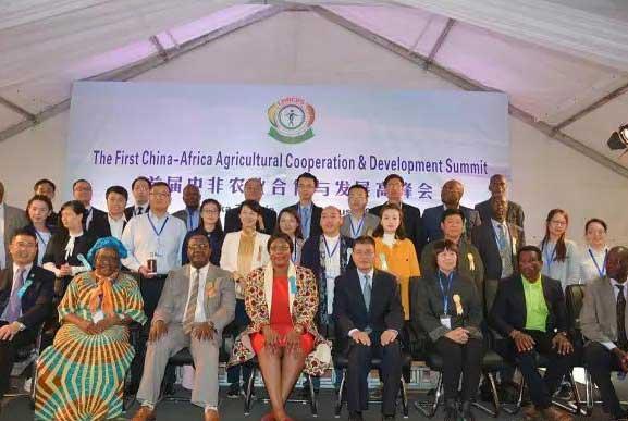 中非农业合作发展高峰会将于6月在南非开幕 中非八国同庆同乐 亚洲非洲共享共赢